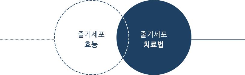 왼쪽 : 줄기세포 효능, 오른쪽 : 줄기세포 치료법